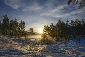 Foto Tonje Jakobsen